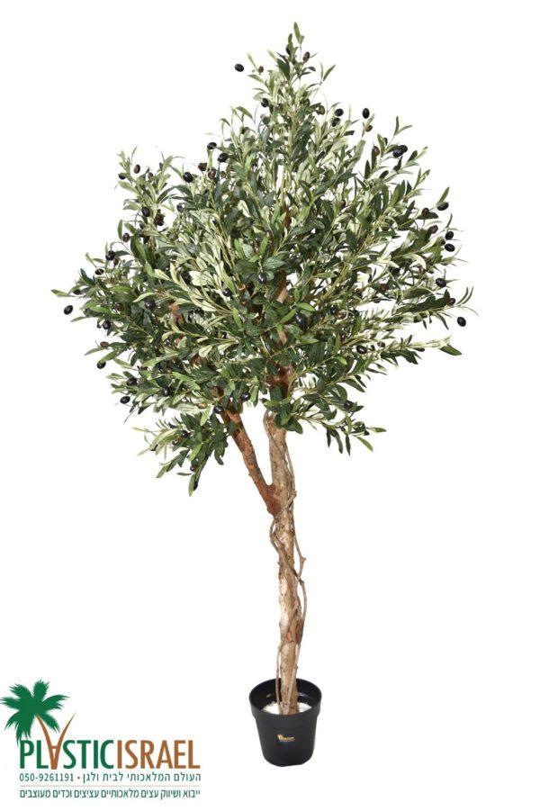 עץ זית מלאכותי