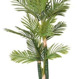 עץ דקל טבעות 3 גזעים