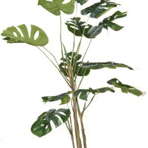 עץ מונסטרה מלאכותיות